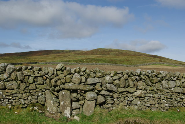 A view towards Ewe Hill from the Grobdale to Girthon track