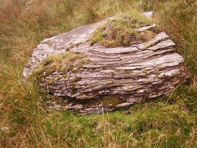 Layered sandstone boulder