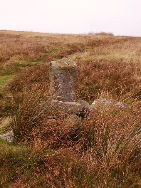 Standing stone path marker