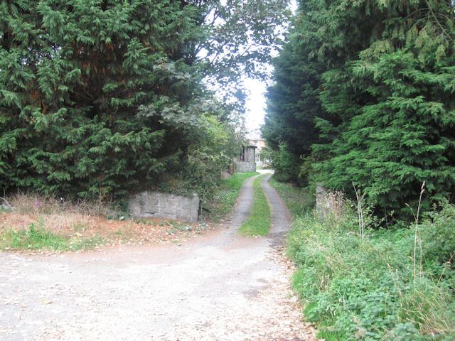 Driveway at Bank
