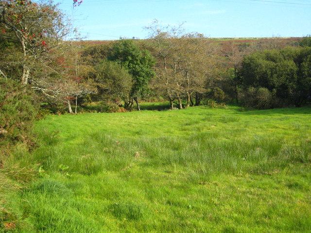 Riverside meadow at Trekeivesteps