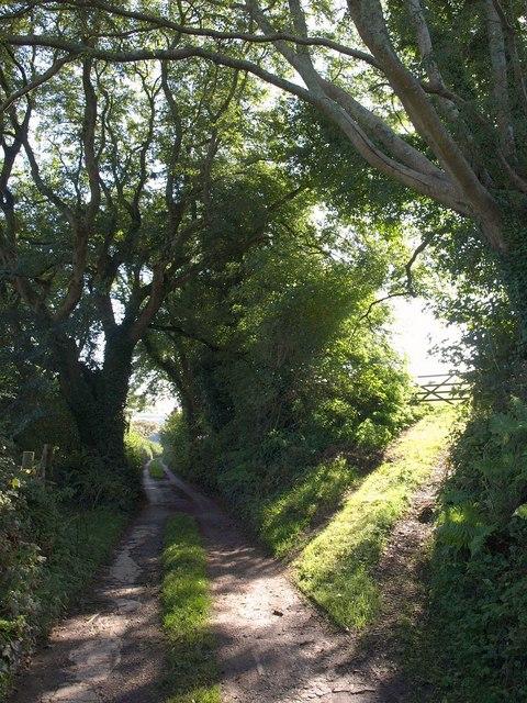 Avon Estuary Walk