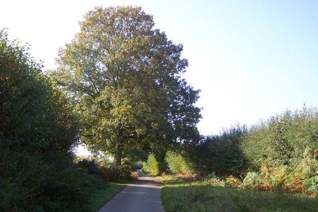 Garfield Farm access road