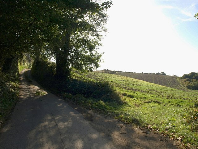 Lane to Marwell