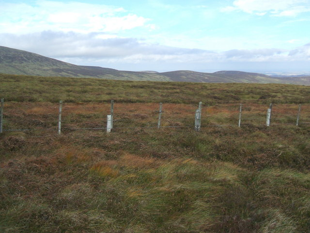 Fence between Hedgehope Hill and Comb Fell