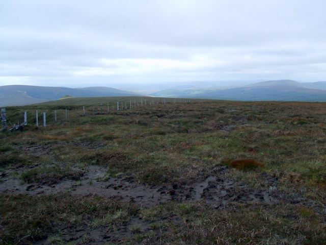 Fence corner , Comb Fell