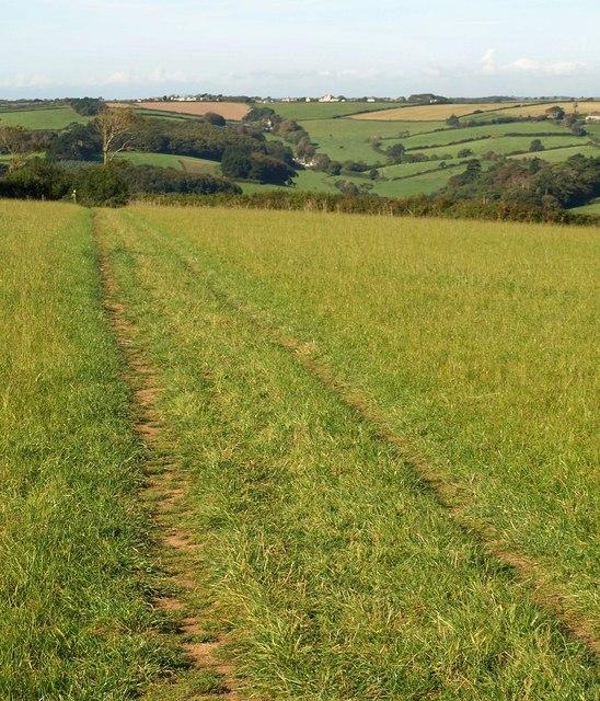 Footpath to Furzedown Wood