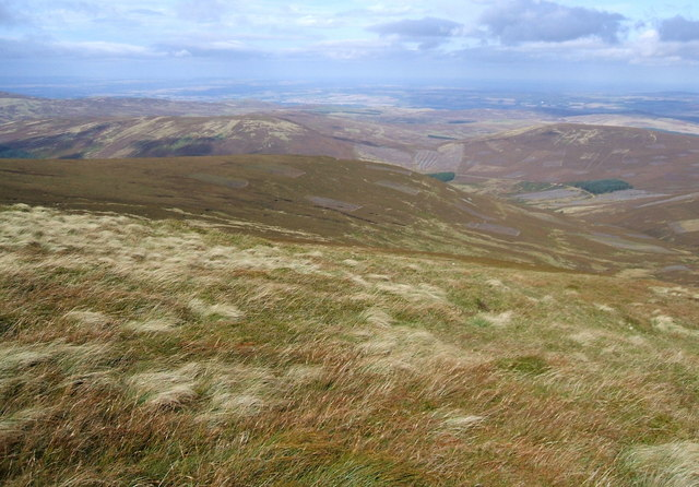 North-east slope of The Cheviot