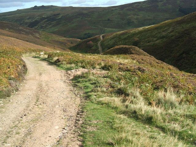 Path by the Hawsen Burn