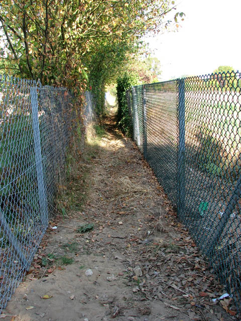 Narrow path between two fences