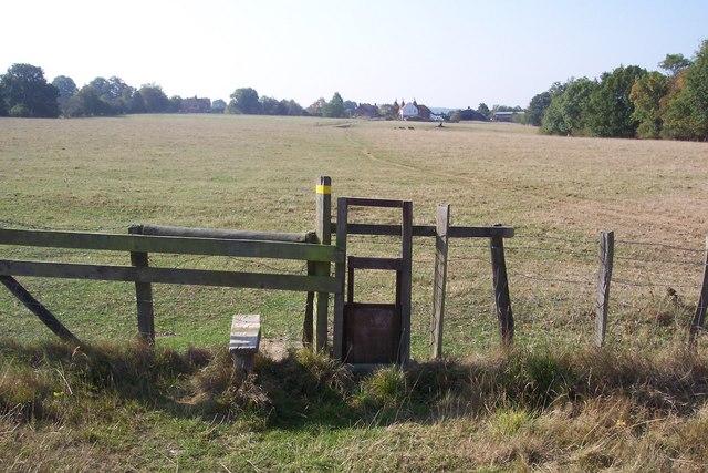 Stile and dog gate towards Trottenden Farm