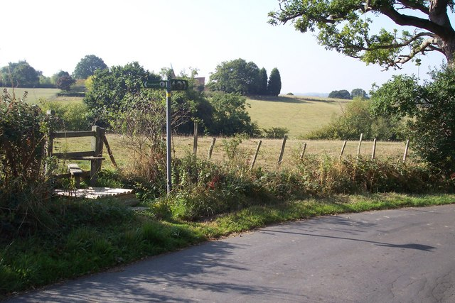 High Weald Landscape leaves Small Bridge Road