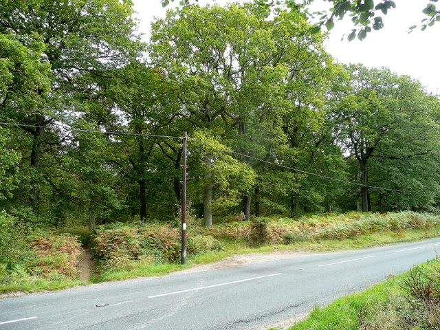New Road, B4234