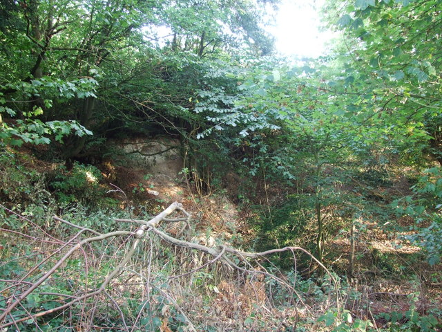 Bomb crater, Blowers Wood, Hempstead