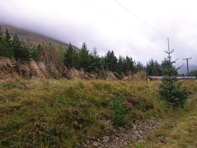 Roadside, A85