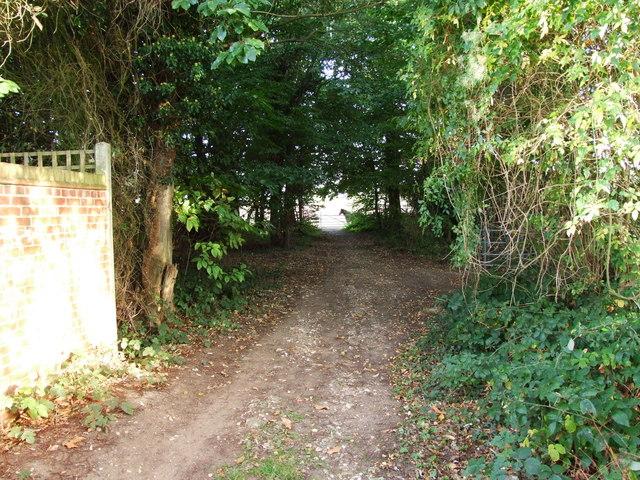 The southern tip of Spekes Road, Hempstead
