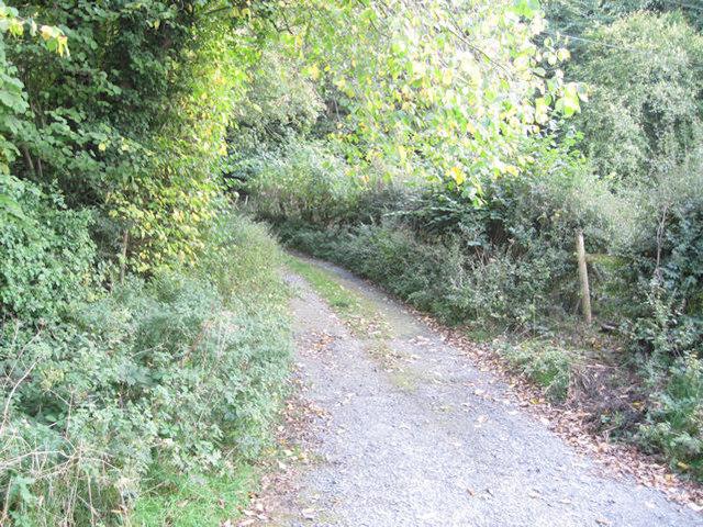 Track near Brimford House