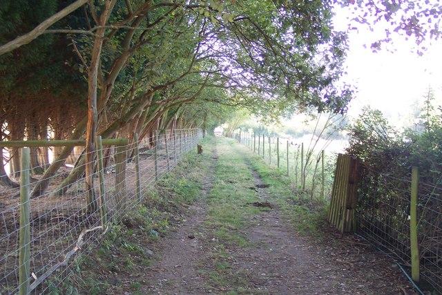 Footpath towards Lower Crowbourne Farm