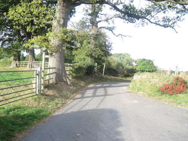 Bend in Trederwen Road