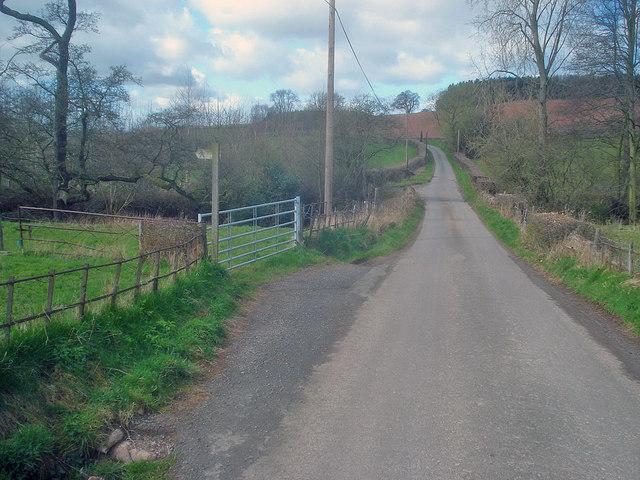 Lane near Hatfield Court
