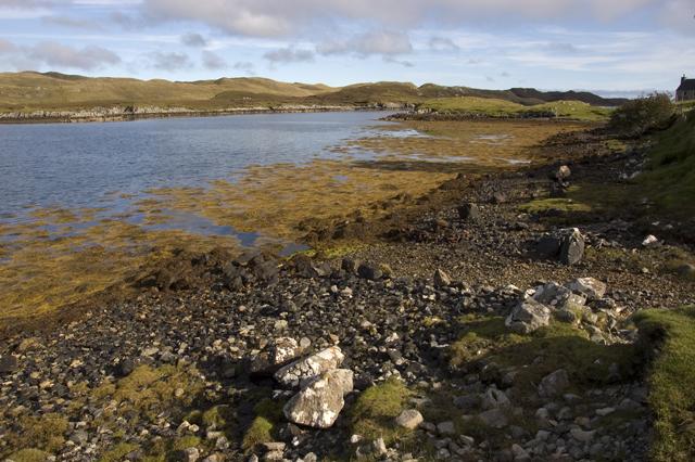 Shoreline at Orasaigh