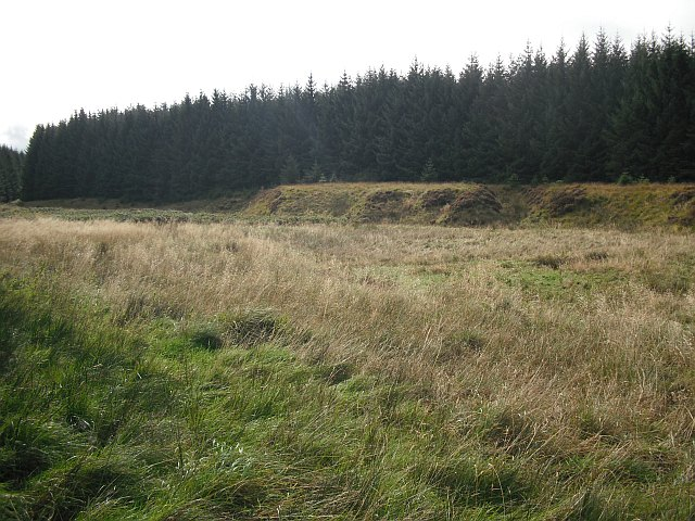 Clearing beside the Carter Burn