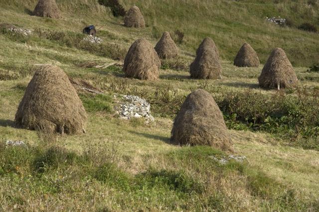 Traditional Hebridean haystacks