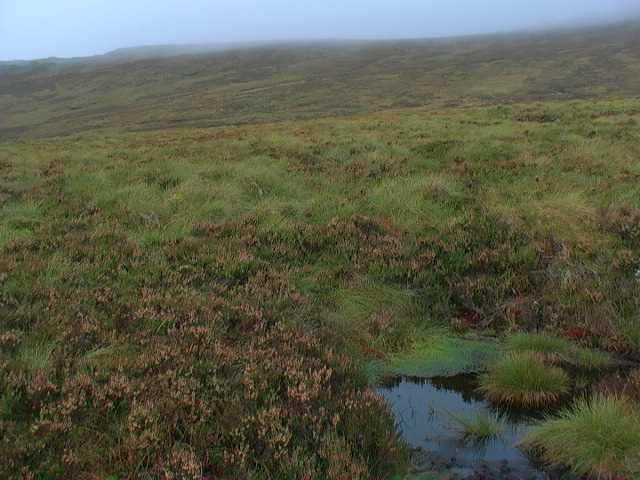 Boggy pool at the foot of Meall a' Phuill's southern slopes