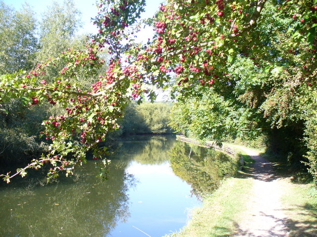 Grand Union Canal, Kings Langley