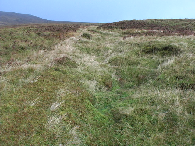 Looking up the course of a burn meandering through a grassy bed between peat mounds