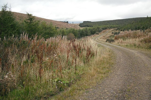 Road up Kirn Cleuch