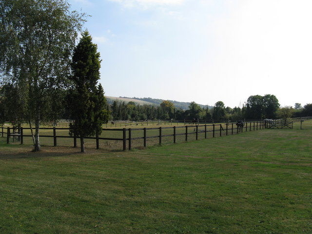 Paddocks at The Vale