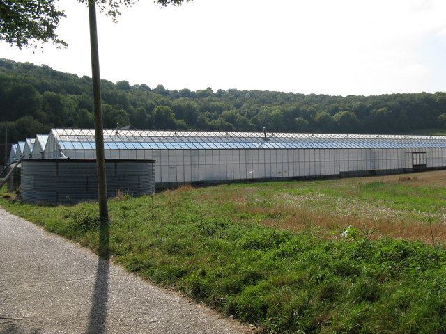 Water tank and greenhouses at Roger's Farm