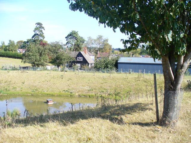 By Wayside Farm