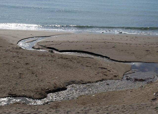 Stream, Westcombe Beach