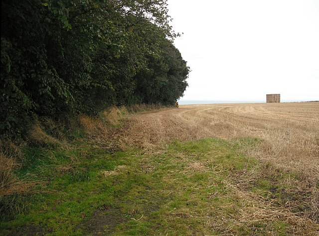 Arable land, Dunninald