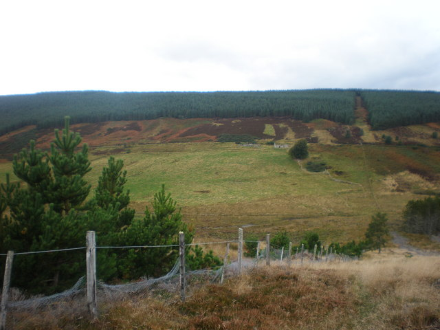 Looking across Glen of Scotsburn