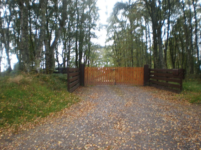 Autumn leaves at gated road near Marybank