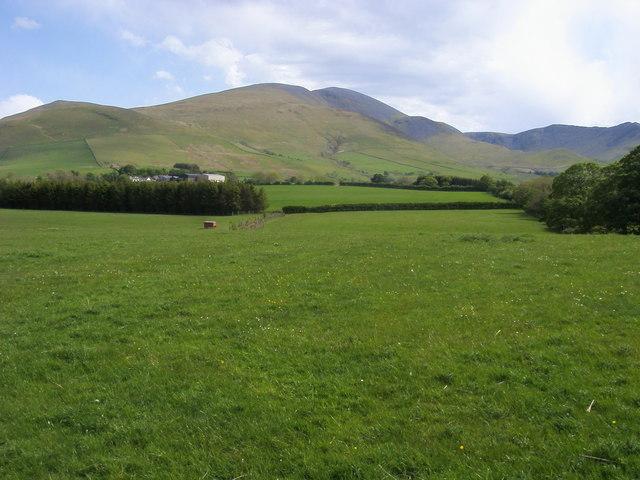 Fields below Peter House Farm