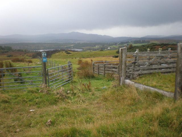 Sheepfold near Migdale