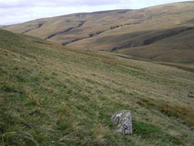 Hillside above Burleywhag