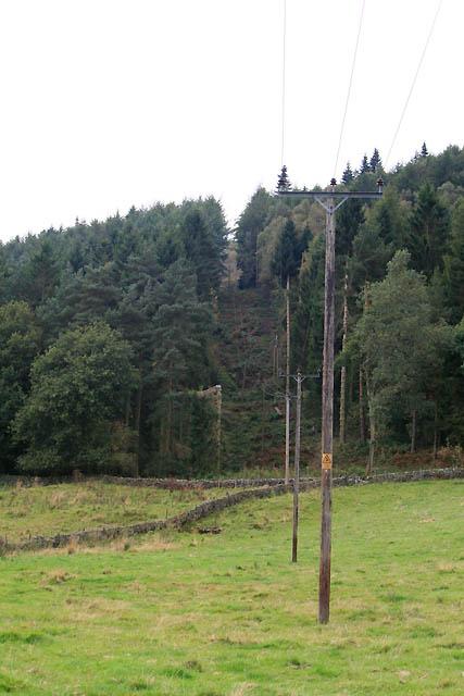Gap Through Lindop Wood