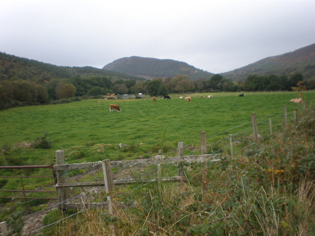 Pasture land by Spinningdale Burn