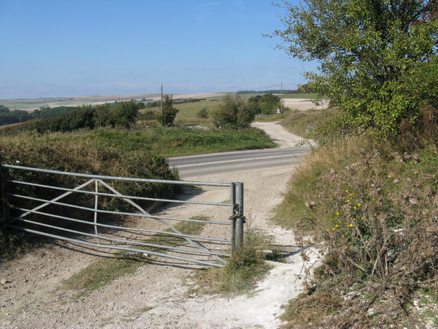 Risky crossing of the Monarch's Way