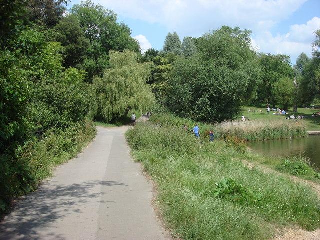 Footpath, Hampstead Heath
