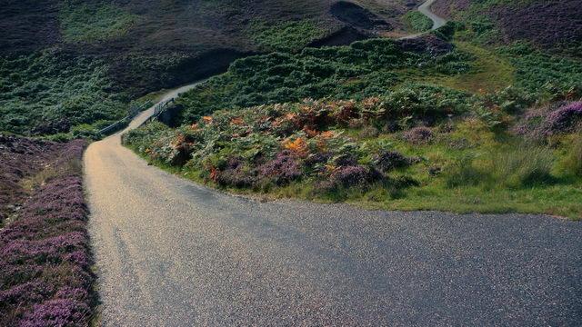 Single-track road