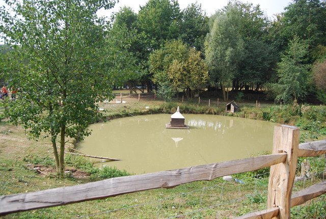 Museum of Kent Life - Duck pond