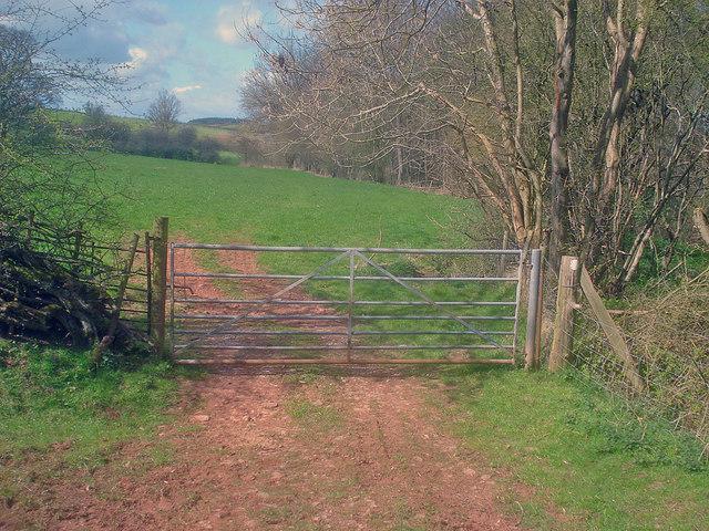 Footpath to Hatfield Court