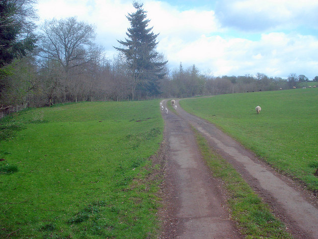Track to Hatfield