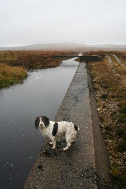 Draining the bog near the Crask
